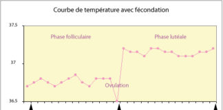 Courbe temperature fecondation Dr SKHIRI